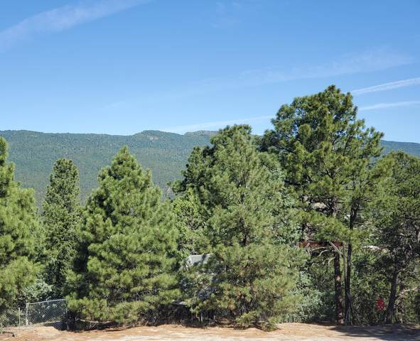 6 Sangre De Cristo Court, Cedar Crest, NM 87008 (MLS #972368) :: Campbell & Campbell Real Estate Services