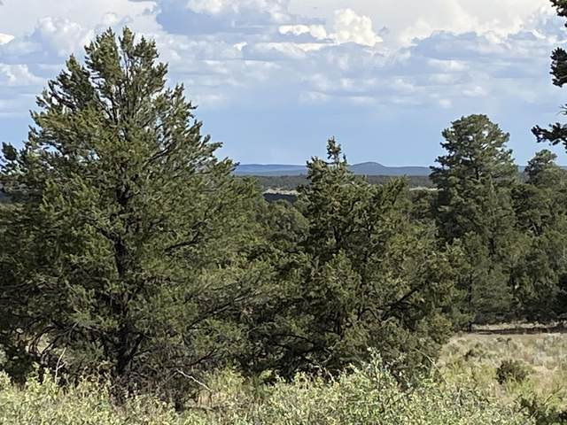 Lots10-11 High Horse Loop Road, Ramah, NM 87321 (MLS #972672) :: Keller Williams Realty