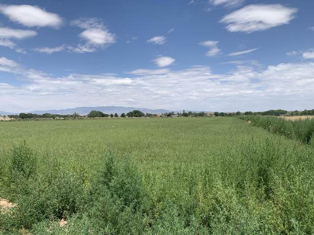 Carrillo Road, Veguita, NM 87062 (MLS #972689) :: Campbell & Campbell Real Estate Services