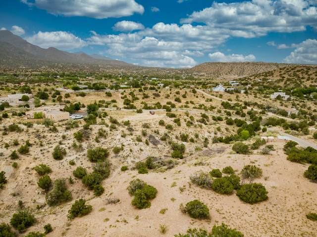 0 La Entrada, Placitas, NM 87043 (MLS #972707) :: The Buchman Group