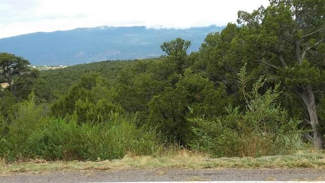 7 Woodlands Drive, Tijeras, NM 87059 (MLS #972732) :: The Bigelow Team / Red Fox Realty