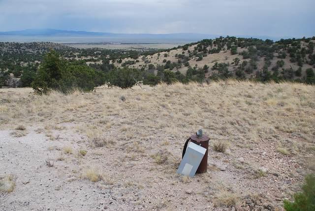 Lot 49 Wildwood Highlands, Datil, NM 87821 (MLS #972803) :: Keller Williams Realty