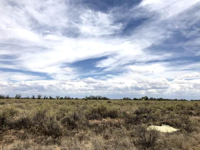 Valle Verde Road, Moriarty, NM 87035 (MLS #972875) :: The Bigelow Team / Red Fox Realty