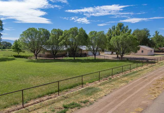 1700 W Bosque Loop, Bosque Farms, NM 87068 (MLS #972997) :: Sandi Pressley Team