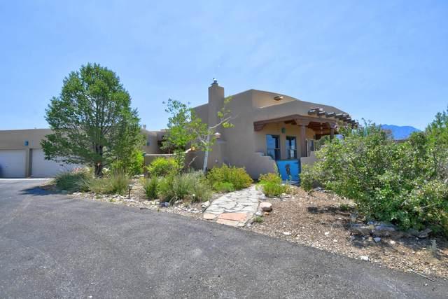207 Camino De Las Huertas, Placitas, NM 87043 (MLS #973004) :: The Buchman Group