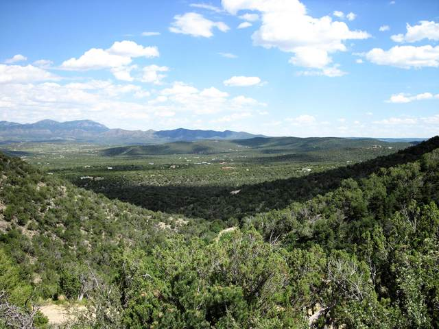 80 Skyline Heights Court, Sandia Park, NM 87047 (MLS #973038) :: The Buchman Group