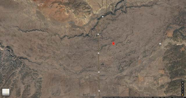 Nm-36, Lot 75, Fence Lake, NM 87315 (MLS #973175) :: The Buchman Group