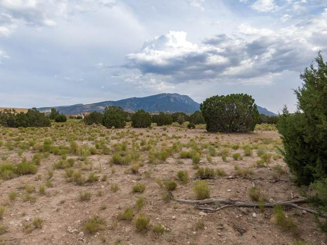 32 Horseshoe Loop, Placitas, NM 87043 (MLS #973194) :: The Bigelow Team / Red Fox Realty