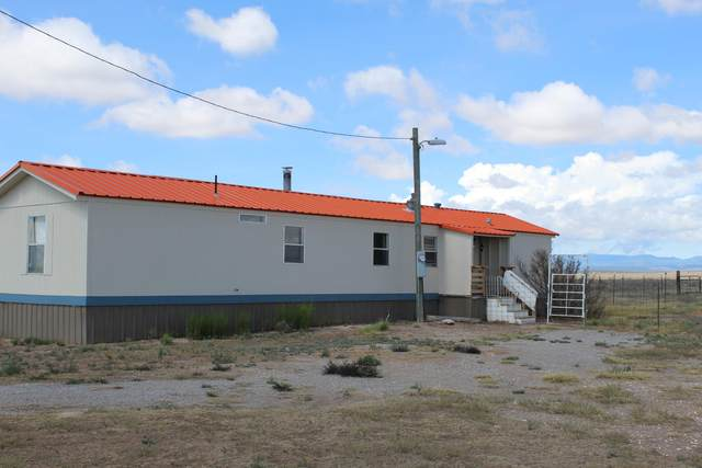 350 Irving Drive, Estancia, NM 87016 (MLS #973288) :: The Bigelow Team / Red Fox Realty