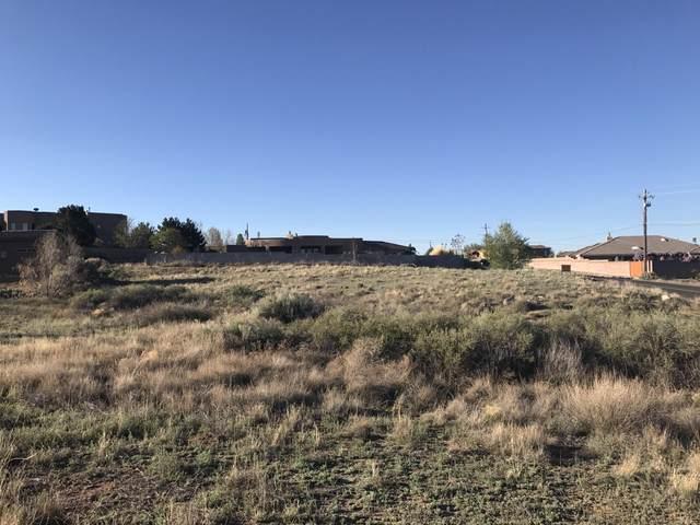 Eagle Rock Avenue NE, Albuquerque, NM 87122 (MLS #973308) :: The Buchman Group