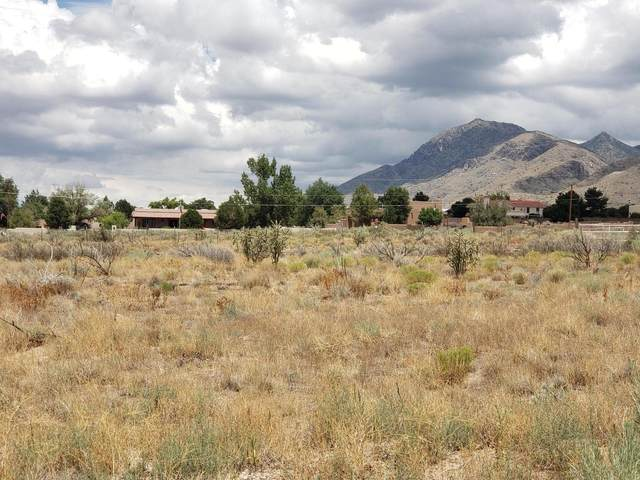 Eagle Rock Avenue NE, Albuquerque, NM 87122 (MLS #973374) :: The Buchman Group