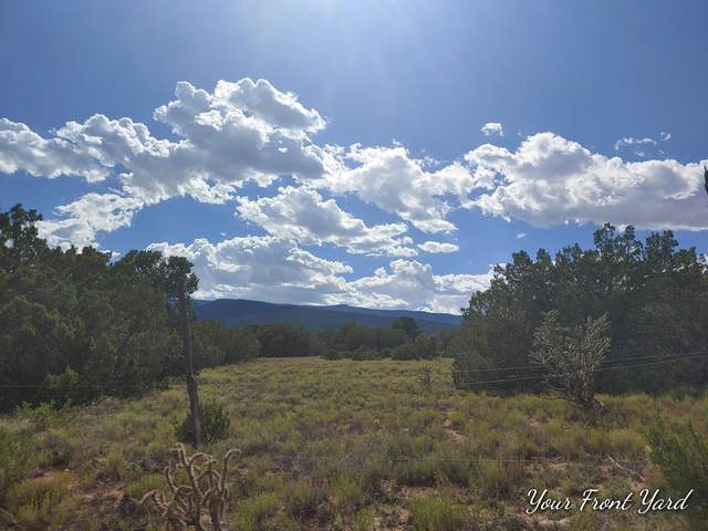 La Madera Road, Sandia Park, NM 87047 (MLS #973630) :: Campbell & Campbell Real Estate Services