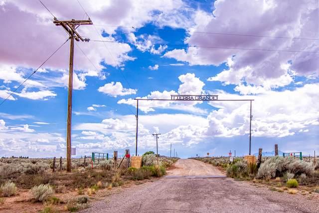 15 Las Borregas Road, Belen, NM 87002 (MLS #973684) :: Campbell & Campbell Real Estate Services