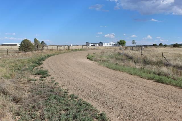 47 Coyote Loop, Moriarty, NM 87035 (MLS #973703) :: The Bigelow Team / Red Fox Realty