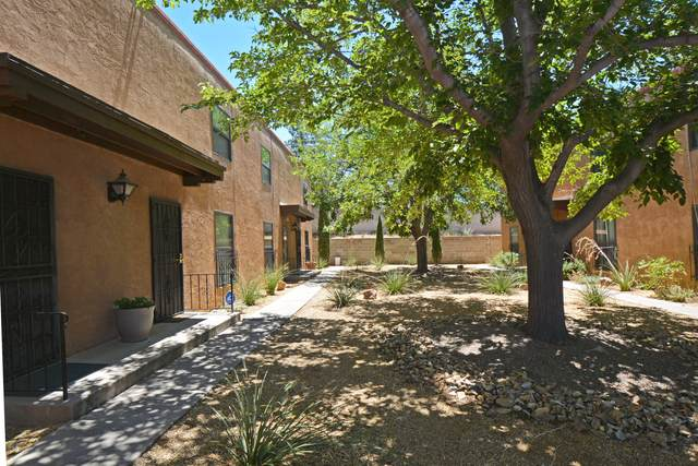 3408 Indian School Road NE D, Albuquerque, NM 87106 (MLS #973751) :: The Buchman Group