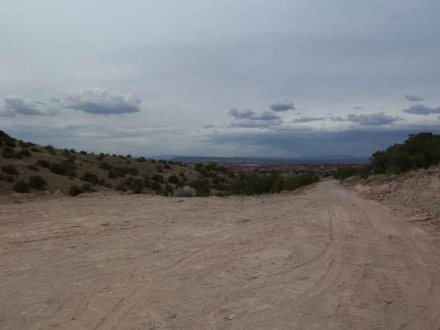 Homesteads Road, Placitas, NM 87043 (MLS #973842) :: The Buchman Group
