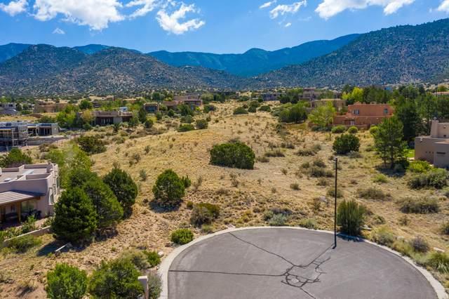 6200 Fringe Sage Court NE, Albuquerque, NM 87111 (MLS #973979) :: Berkshire Hathaway HomeServices Santa Fe Real Estate
