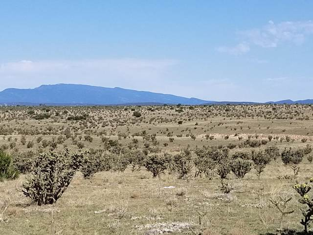 371 Thompson Road, Edgewood, NM 87015 (MLS #973982) :: Campbell & Campbell Real Estate Services