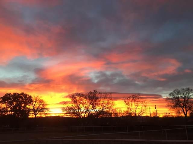 455 Garcia Lane, Bosque Farms, NM 87068 (MLS #974015) :: Sandi Pressley Team