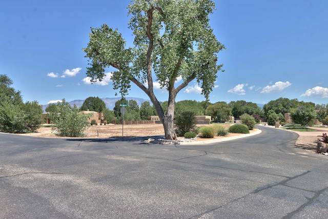 0 Bona Terra Place NW, Albuquerque, NM 87114 (MLS #974019) :: The Bigelow Team / Red Fox Realty
