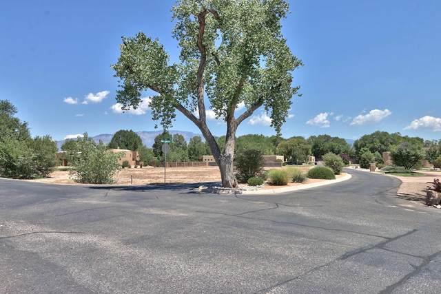 0 Bona Terra Place NW, Albuquerque, NM 87114 (MLS #974019) :: Keller Williams Realty