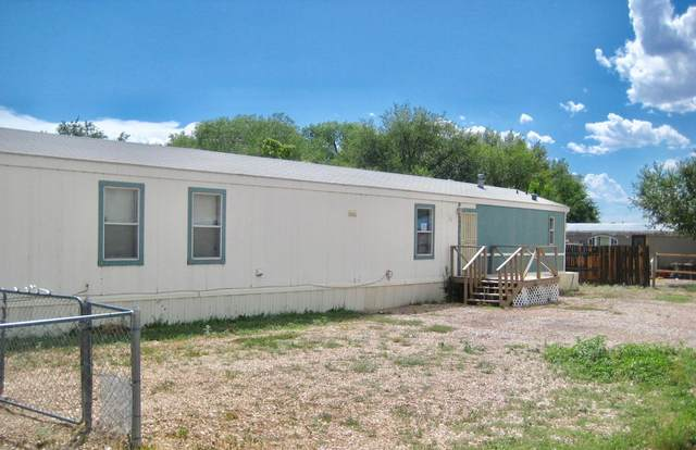 317 La Corrida, Bernalillo, NM 87004 (MLS #974059) :: Campbell & Campbell Real Estate Services