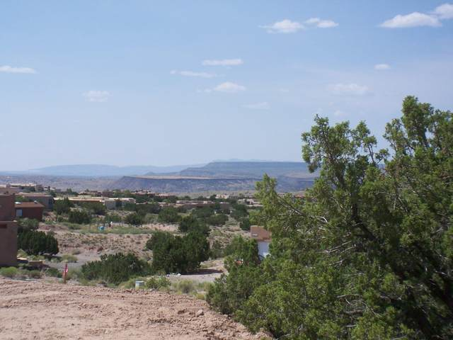 46 Cienega Canyon Rd, Placitas, NM 87043 (MLS #974097) :: The Buchman Group