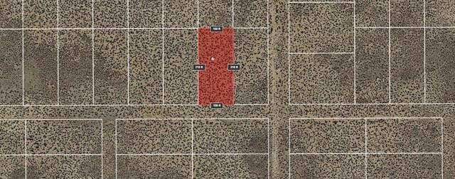 Lot 16 Rio Grande Estates U, Rio Communities, NM 87002 (MLS #974128) :: Campbell & Campbell Real Estate Services