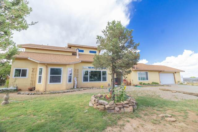75 Pinto Road, Edgewood, NM 87015 (MLS #974252) :: Campbell & Campbell Real Estate Services