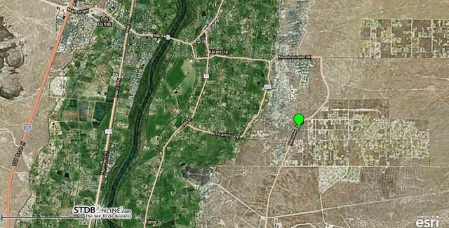 3 Manzerro Place, Los Lunas, NM 87031 (MLS #974366) :: Keller Williams Realty