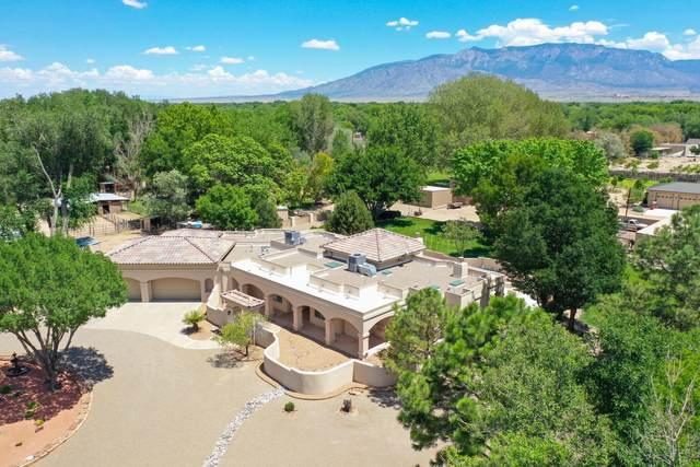 198 Caminito Alegre, Corrales, NM 87048 (MLS #974382) :: Campbell & Campbell Real Estate Services