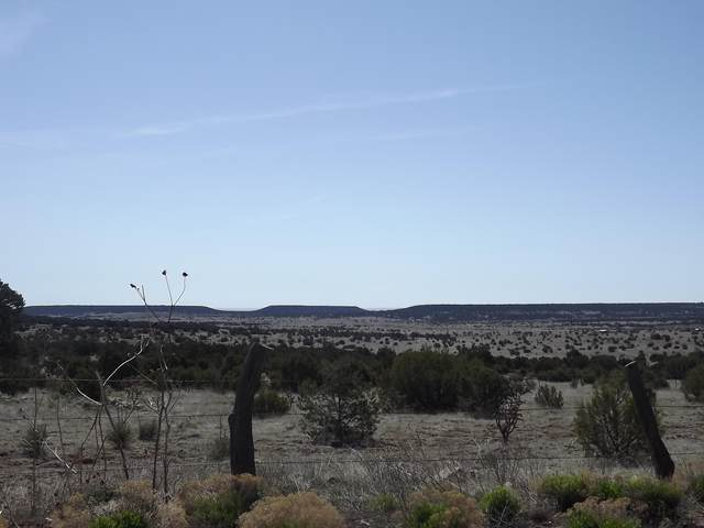 Gallegos Road, Tijeras, NM 87059 (MLS #974395) :: Campbell & Campbell Real Estate Services