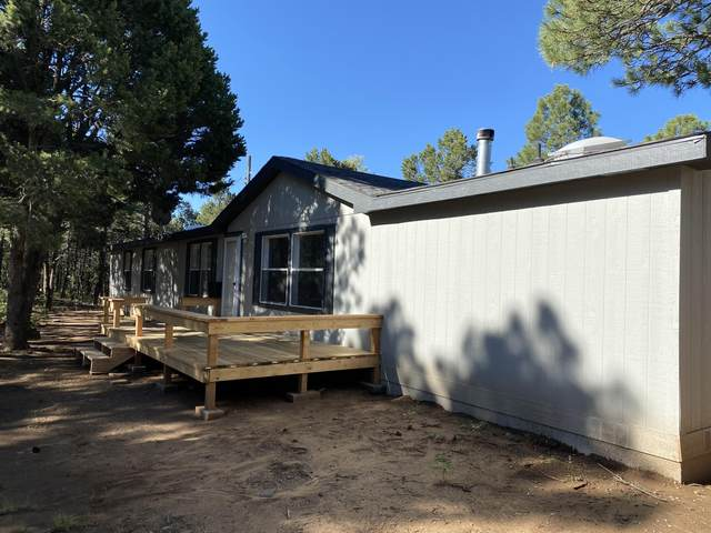 72 Raven Road, Tijeras, NM 87059 (MLS #974406) :: Campbell & Campbell Real Estate Services