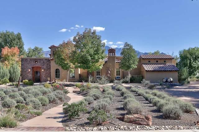 437 Avenida C De Baca, Bernalillo, NM 87004 (MLS #974573) :: Campbell & Campbell Real Estate Services