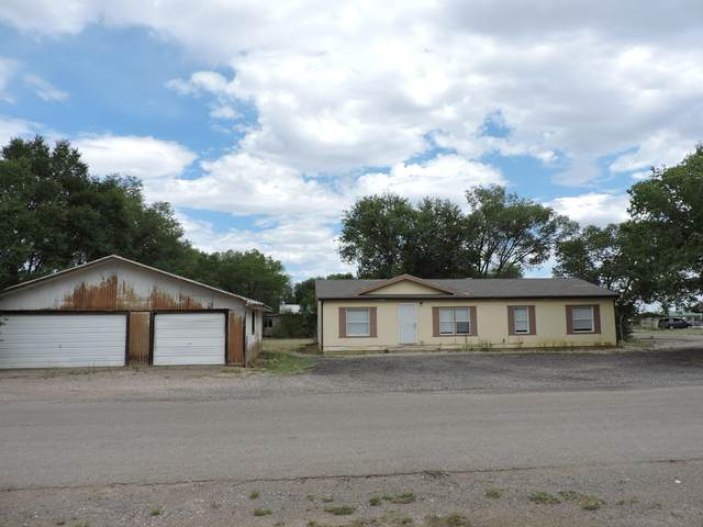 601 Irene Street, Moriarty, NM 87035 (MLS #974625) :: Campbell & Campbell Real Estate Services