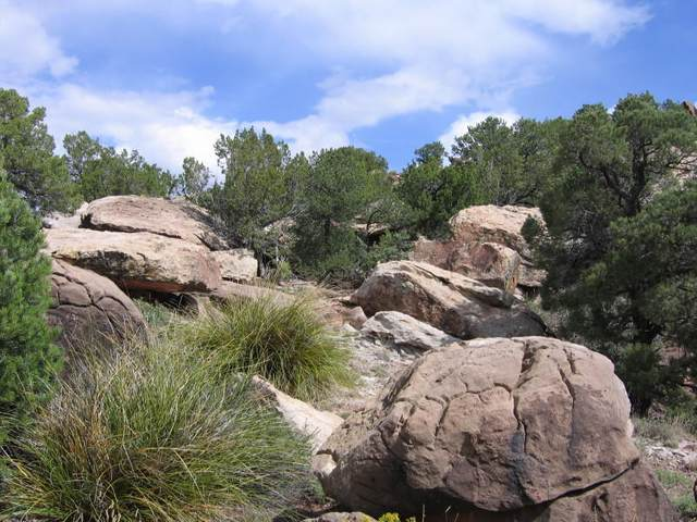 29 Sunrise, Santa Rosa, NM 88435 (MLS #974669) :: Campbell & Campbell Real Estate Services