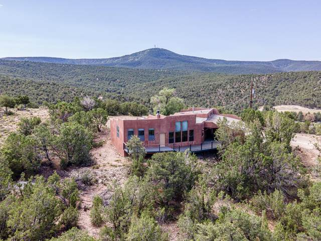 35 Gallinger Lane, Tijeras, NM 87059 (MLS #974738) :: Campbell & Campbell Real Estate Services