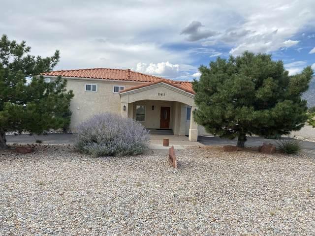 11411 San Bernardino Avenue NE, Albuquerque, NM 87122 (MLS #974745) :: The Buchman Group