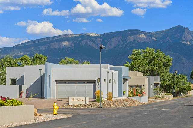 916 Paseo Los Coyotes, Bernalillo, NM 87004 (MLS #974756) :: Campbell & Campbell Real Estate Services