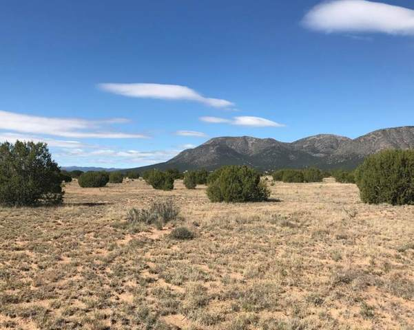 997 State Road 344, Edgewood, NM 87015 (MLS #974761) :: Campbell & Campbell Real Estate Services
