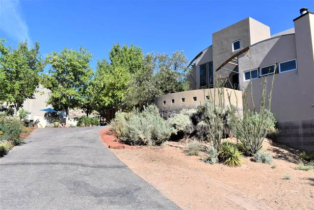 151 Hop Tree Trail, Corrales, NM 87048 (MLS #974766) :: Campbell & Campbell Real Estate Services