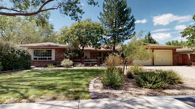 3017 Charleston Street NE, Albuquerque, NM 87110 (MLS #974769) :: Campbell & Campbell Real Estate Services