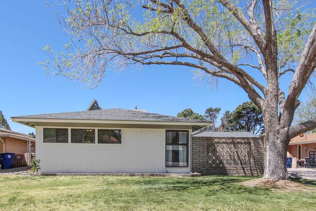 3107 Indiana Street NE, Albuquerque, NM 87110 (MLS #974780) :: Campbell & Campbell Real Estate Services