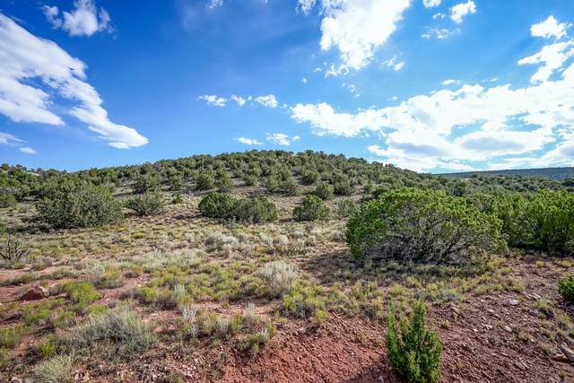 101 Crestview Court, Placitas, NM 87043 (MLS #974796) :: Campbell & Campbell Real Estate Services
