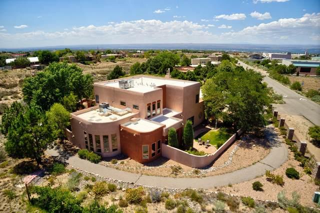 11110 Palomas Road NE, Albuquerque, NM 87122 (MLS #975019) :: HergGroup Albuquerque