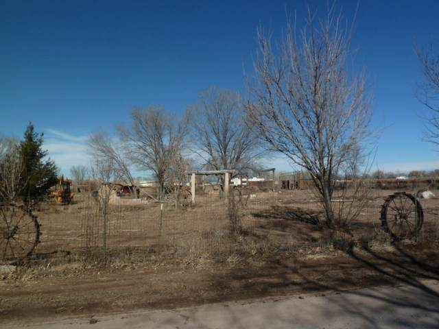 Benito Lane, Los Lunas, NM 87031 (MLS #975036) :: Campbell & Campbell Real Estate Services