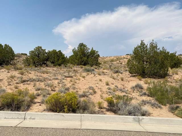 2403 Desert Zinnia Road NE, Rio Rancho, NM 87144 (MLS #975303) :: HergGroup Albuquerque