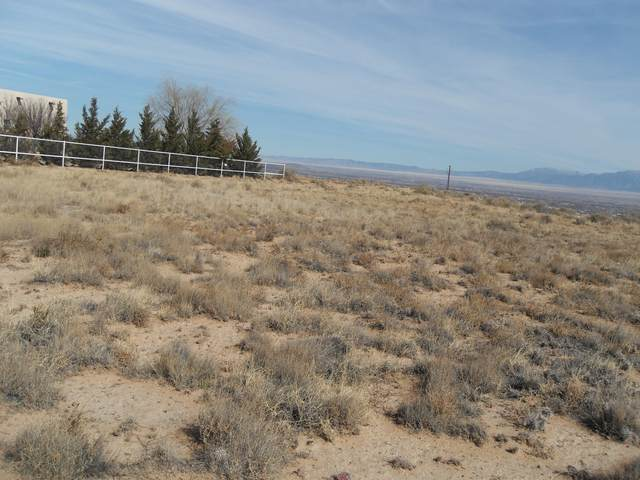Encima De W Camino Del Llano B, Belen, NM 87002 (MLS #975367) :: The Buchman Group