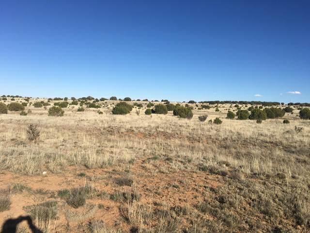 Mission Hills Road, Estancia, NM 87016 (MLS #975373) :: The Buchman Group