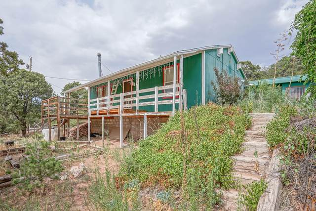 5 Derek Road, Sandia Park, NM 87047 (MLS #975404) :: Berkshire Hathaway HomeServices Santa Fe Real Estate